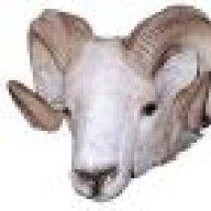 Bad TCM or Valve Body assy or Solenoid/TRS assy or ??? | DODGE RAM FORUM